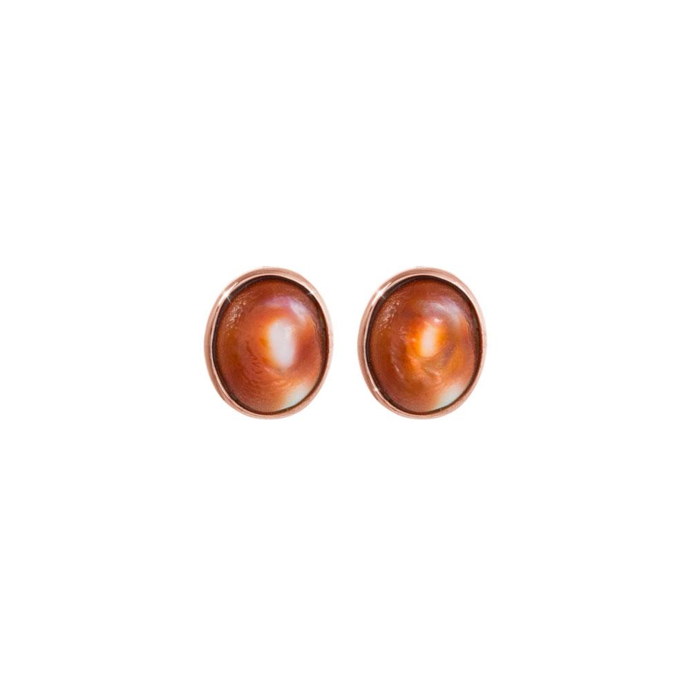 Natural Seashell Earrings, Eye of Saint Lucia In Rose Gold